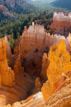 Bryce Canyon National Park, Utah, USA (Photo by Brett Nickeson) Arches Nationalpark, Yellowstone Nationalpark, Oh The Places You'll Go, Places To Travel, Places To Visit, Voyage Usa, Parque Natural, Dame Nature, Bryce Canyon