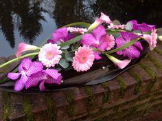 Dendrobium, Calla, Daisy