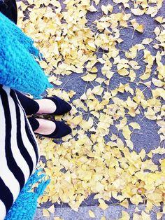 Fall in South Korea is my favorite season. (scheduled via http://www.tailwindapp.com?utm_source=pinterest&utm_medium=twpin&utm_content=post1167143&utm_campaign=scheduler_attribution)