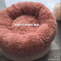 Fluffy Dog Bed, 2 PCS/for Small Dogs, cat bed, French Bulldogs Big Dog Beds, Dog Beds For Small Dogs, Dog Pee Pads, Pet Dogs, Dog Cat, Sleeping Puppies, Cockerspaniel, Dog Furniture, Boston Terrier Dog