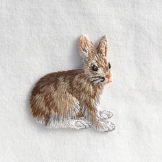 . the rabbit aa
