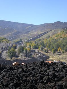 Mt. Etna, Sicily! My husband drove us up the south side of Etna when it was erupting in 2002. We passed many sights just like this - pumice fields, cooled lava, and new forests.