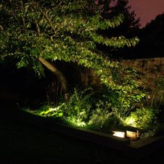 Puck LED Landscape Light by Made in the USA | | DEKOR™