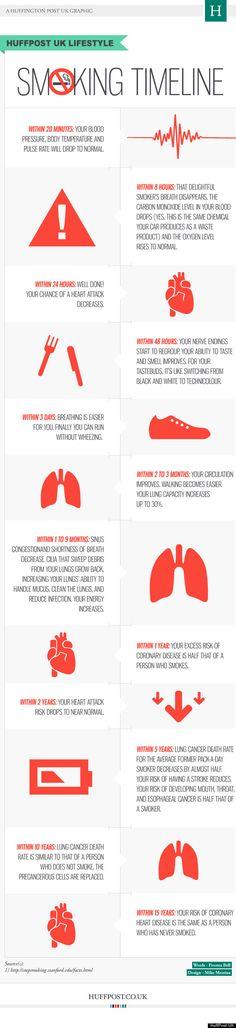 Infographic: wat doet stoppen met roken met je lijf? - Wel.nl