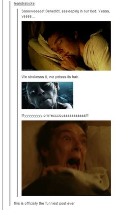 Benedict, my precioussss.... - Imgur. HAHAHAHHAHA, I can't stop the giggles, this is pretty much the best thing ever.