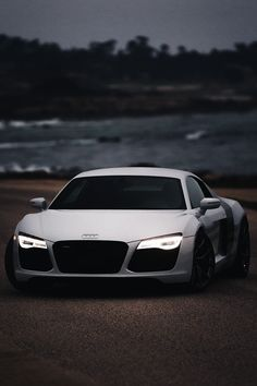 "chella-pus: "" viciousclass: ""R8. "" Nature and photography blog """