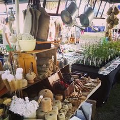 """""""At harvest in the park Cowra with the Akuna Carrier from @fairweatherdesign. #perennialle #perennialleplants #Canowindra #morethanyouexpect…"""""""