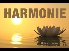 Zen attitude - Séance d'hypnose pour trouver l'harmonie - YouTube
