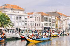 Portugal Travel Guide: 5 Day Trips from Aveiro - Grace J. Europe Train Travel, Travel Tours, Europe Travel Tips, Travel And Tourism, Italy Travel, Travel Ideas, Travel Destinations, Cities In Germany, Visit Germany