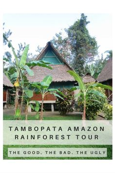 The Amazon Rainforest is a spectacular place and Tambopata in Peru is no exception. Unfortunately you need a tour to go there, it is the jungle after all. Here's a review of how the tour was.