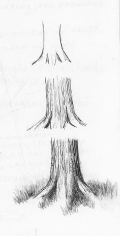 Basic 102 - Class 13 - Trees - WetCanvas