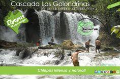 Chiapas 2013