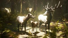 Elevate your workflow with the Animalia - Elk (pack) asset from gim. Find this & other Animals options on the Unity Asset Store. Unity, Animation, Horses, Vector Icons, Characters, Animals, Business, Design, Animales