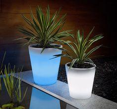 solar powered plant pots!
