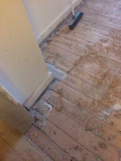 Gulv lim/cement fjernes