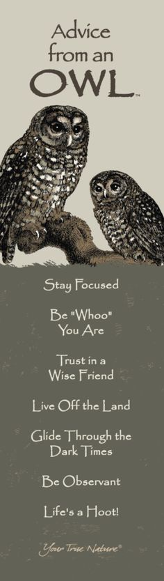 """""""Be """"Whoo"""" You Are"""" Advice from an Owl bookmark."""