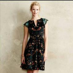 Larksong Anthropolgie Eva Franco Dress RARE! Absolutely Gorgeous! Eva Franco Dresses