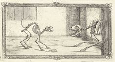 Cat and dog skeletons. Ferocious. (Image: William Chesleden's 'Osteographia, or The anatomy of the bones', Courtesy of the National Library of Medicine)