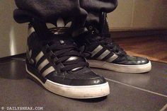 day 280: Adidas Hardcourt Hi Big Logo #adidas #adidashardcourt #hardcourt #sneakers - DAILYSNEAX