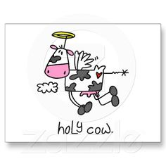 Funny Cows Post Cards