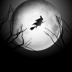 Halloween background with silhouette of a witch flying in the night sky Marcos Halloween, Halloween Shots, Halloween Flyer, Halloween Moon, Halloween Cartoons, Halloween Images, Halloween Items, Creepy Halloween, Halloween Kids