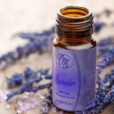 Ovvio Oil's Lavender essential oil can be used to help treat headaches, anxiety, insomnia, nausea, depression, hypertension, motion sickness, and wounds and burns.