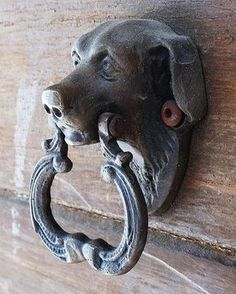 Animal door knockers || Please, leave your comment. Thank you