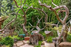 Sculptor Picnic Garden at the RHS Chelsea Flower Show 2015 / RHS Gardening