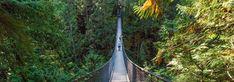 Lynn Canyon Suspension Bridge in Lynn Valley Canyon Park in Vancouver
