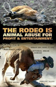 Fuck the zoo flu, the rodeo murder yo, sea hurl, the circus gross ooohhh, and all the other bullshit people and places that exploit our BEAUTIFUL and LOVING fur and not so furry friends