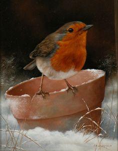 #Art #Robin - Raboty- Carl Andrew Whitfield http://www.ablankcanvas.net
