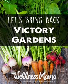 Victory gardens were common during the World Wars as a way to lighten the burden on public food supply. People saw this as an opportunity to be helpful citizens are grew gardens on rooftops, in abandoned lots, and in front yards. While we're thankfully not in the middle of a world war, victory gardens are still a great idea. Here's why.