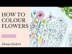 Tutorial : 5 Ways to Colour Flowers - Johanna Basford Colored Pencil Tutorial, Colored Pencil Techniques, Colouring Techniques, Drawing Techniques, Drawing Tips, Drawing Ideas, Pencil Drawing Tutorials, Pencil Drawings, Hair Drawings