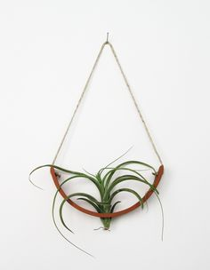 Hanging Air Plant Cradle (tm) - Natural TerraCotta Planter Vase. $36.00, via Etsy.
