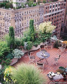 Rooftop Oasis This garden, 19 stories above a New York City street, would also be at home on a suburban deck or patio. It has: formal, architectural elements (a pair of juniper 'Skyrocket'), fine-textured shrubs (hakuro nishiki willow & variegated redtwi Outdoor Rooms, Outdoor Gardens, Outdoor Living, Roof Gardens, Rooftop Terrace, Terrace Garden, Rooftop Nyc, Potted Garden, Privacy Plants