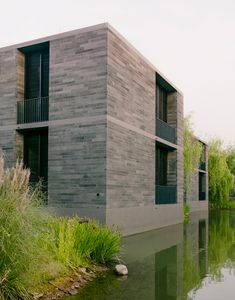 david chipperfield's floating homes emerge from the wetlands in china