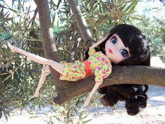 Descansando en un olivo | Flickr: Intercambio de fotos