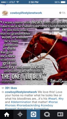 I love this quote and i found this horse but she is not mine :( yet!!!