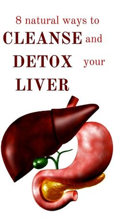 The liver is responsible for many important functions which affect the entire human body. Some of these include cleansing the blood of harmful contaminants and breaking down exhausted hemoglobin cells, regulating hormones such as insulin which controls blood sugar and energy levels, storage of vitamins and minerals, production of bile for digestion of fats, and …