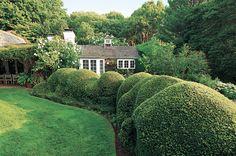 8 Ways To Make Your Garden Look Like It Belongs In The Hamptons