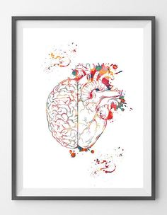 Heart And Brain Bala