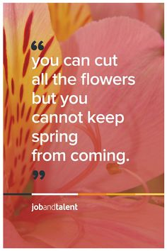 You can cut all the flowers but you cannot keep spring from coming - P. Neruda  www.jobandtalent.com