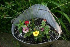 Flowers in the Coal bucket