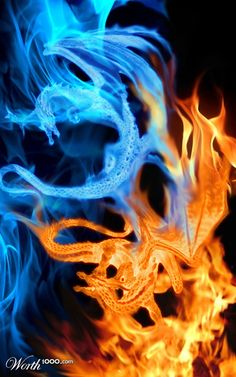 dragons-- the dancing orange and blue flames are awesome! Fire Vs Water, Fire N Ice, Fire Dragon, Dragon Art, Fantasy Dragon, Fantasy Art, Fantasy Creatures, Mythical Creatures, Fire And Ice Dragons