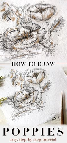 How to Draw Flowers Part 2: Poppies – The Postman's Knock