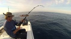 With these best fishing destinations you'll be able to experience South Africa in a new way. Destin Fishing, Marine Life, South Africa, Destinations, Travel Destinations