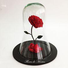 ¿Le gusta #LaBellaYLaBestia? Qué mejor regalo para #SanValentín que #LaRosaEncantada encuéntrala en Flores de México