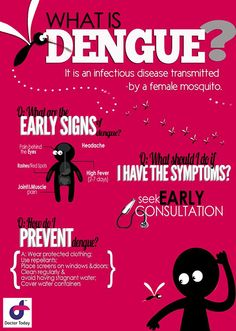 What is Dengue? What are the early signs of dengue? What should i do if i have the symptoms? How do i prevent dengue?