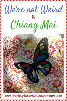 we're not weird in Chiang Mai, Pintersest Poster