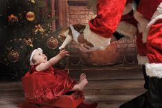 And this cat lover: 29 Babies Who Totally Nailed Their First Christmas Photo Shoot Babies First Christmas, Christmas Baby, Christmas Humor, Christmas Quotes, Newborn Christmas, Father Christmas, Santa Pictures, Baby Pictures, Cute Pictures